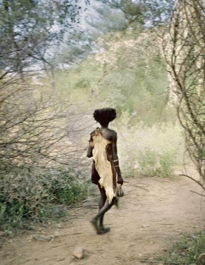 Origen turmi, 2006<br/>Impresión de tintas de pigmentos / Inkjet print