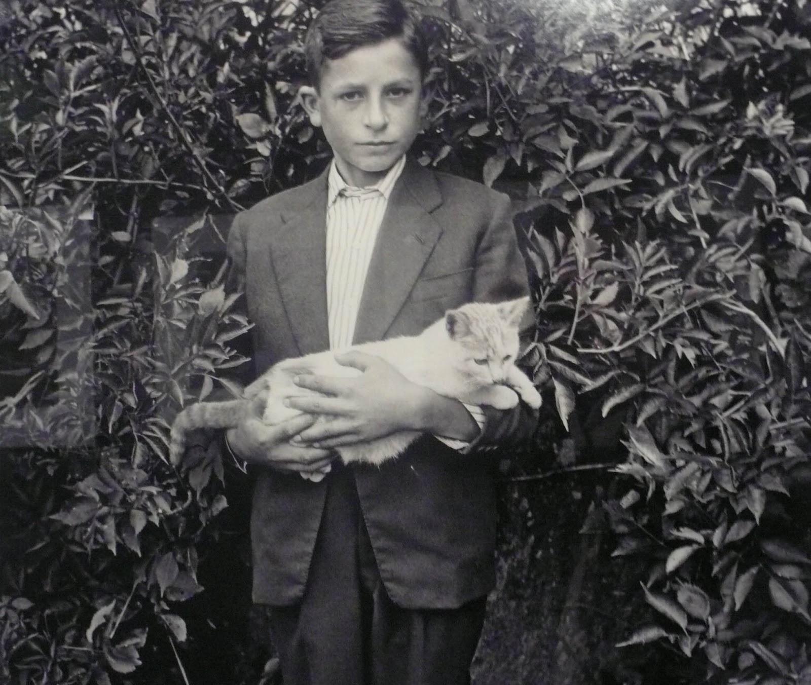 Virxilio Viéitez. Niño con gato, 1958<br/>
