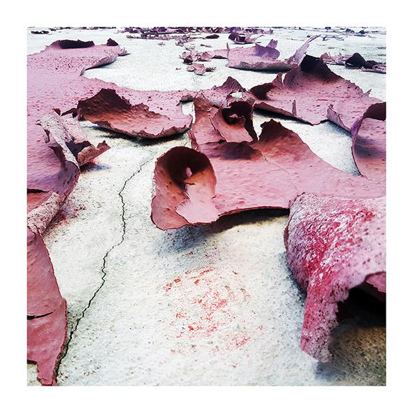 Piel rosa II<br/>