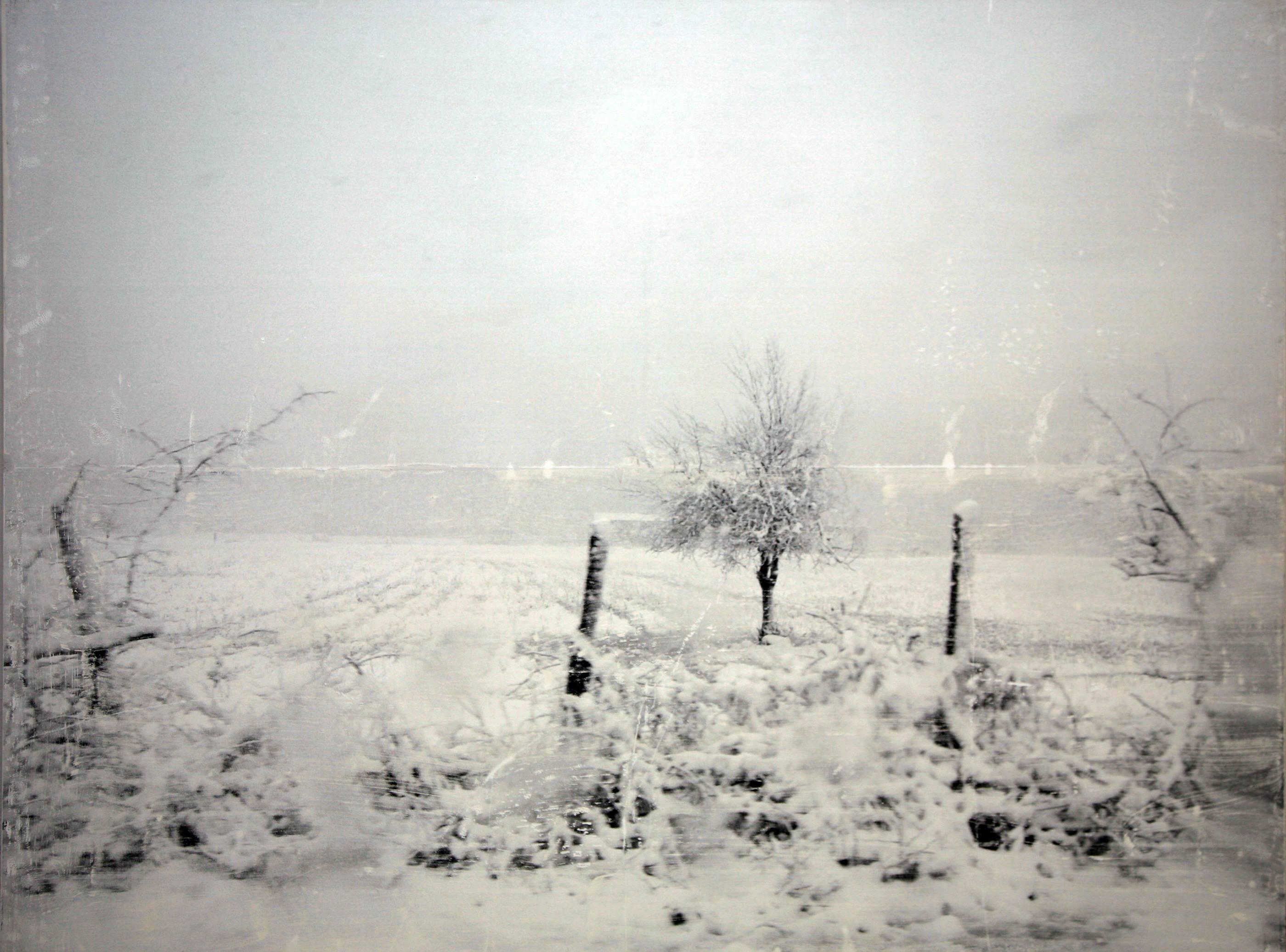 Paisaje de invierno, 2006<br/>