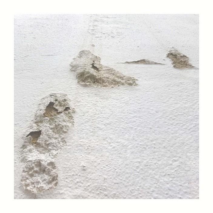 Piel Blanca 1<br/>