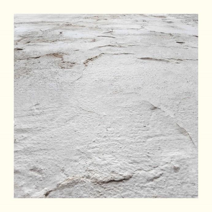 Piel Blanca 12<br/>