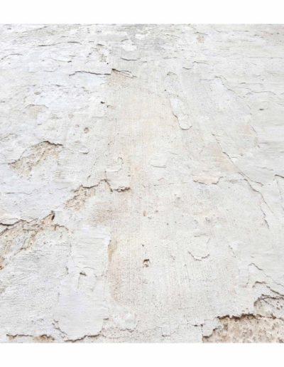 Piel Blanca 14<br/>