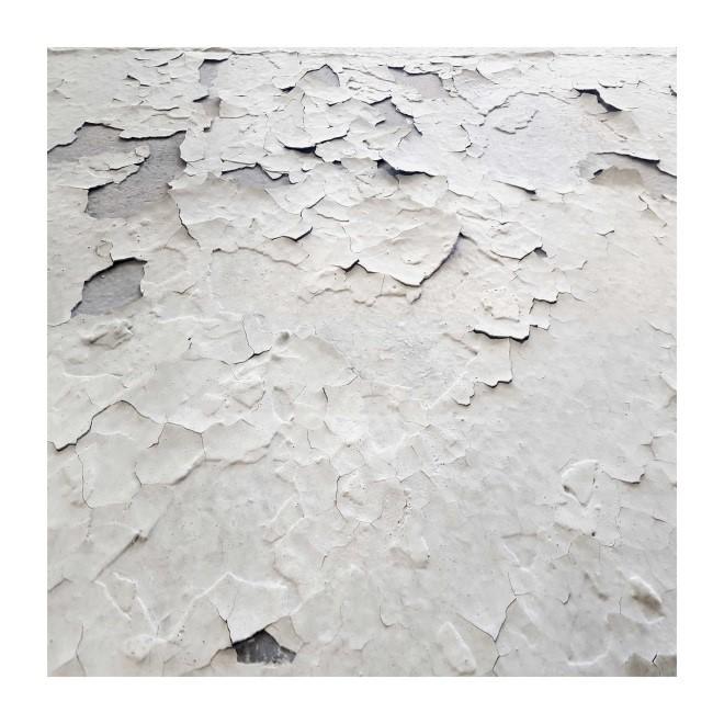 Piel Blanca 45<br/>