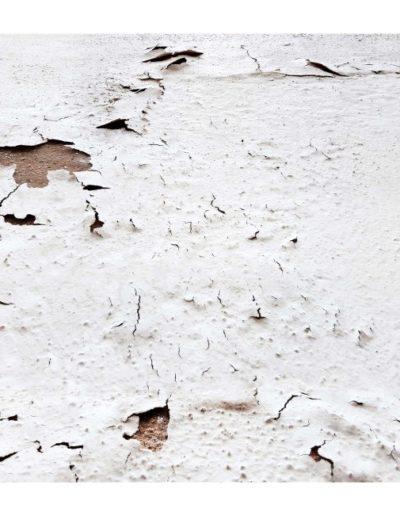 Piel Blanca 6<br/>