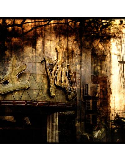 Axelle Foxier. Refugios Interiores 11<br/>