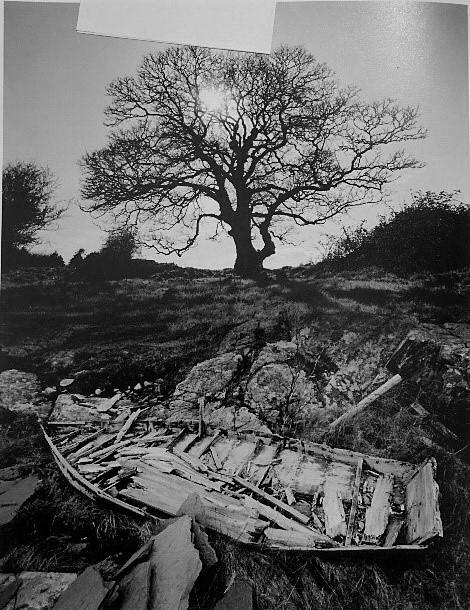 Jerry Uelsmann. Untitled, 2002<br/>Gelatina de plata con tratamiento de archivo