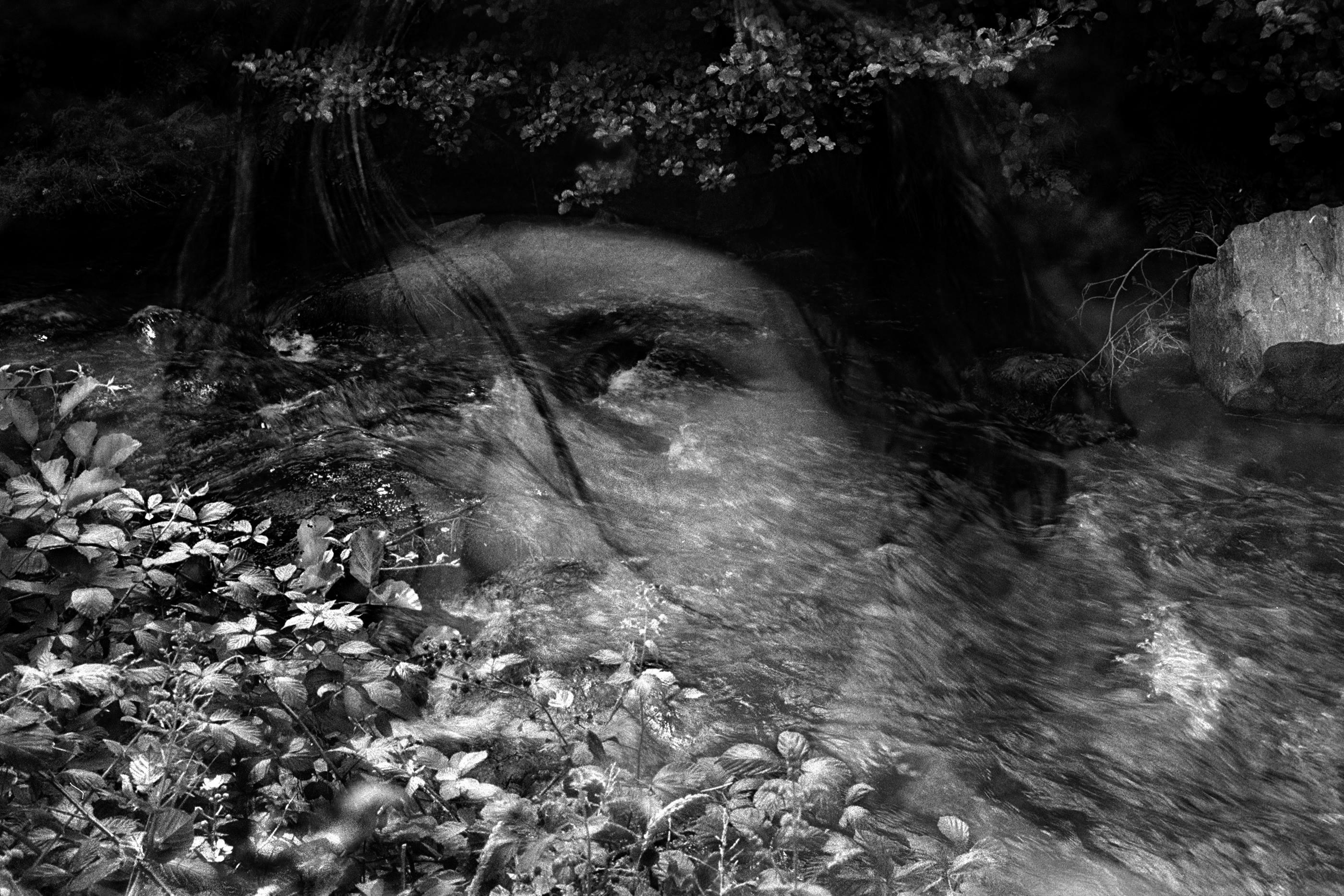 Gabriela Grech<br/>Imágenes de una confusión I. Serie Agua, 2009