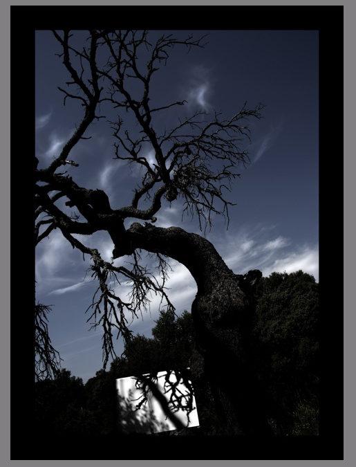 Manel Esclusa. La sombra del paisaje