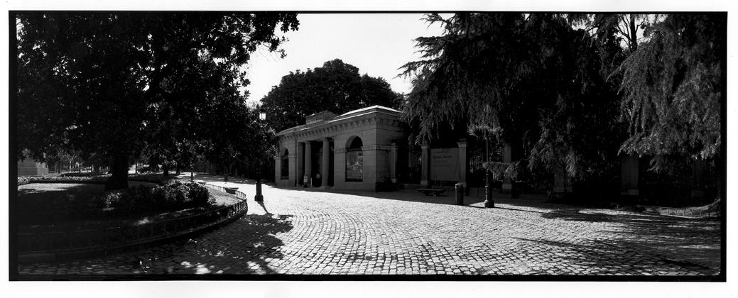 Jardín Botánico #199, 2008<br/>Giclée