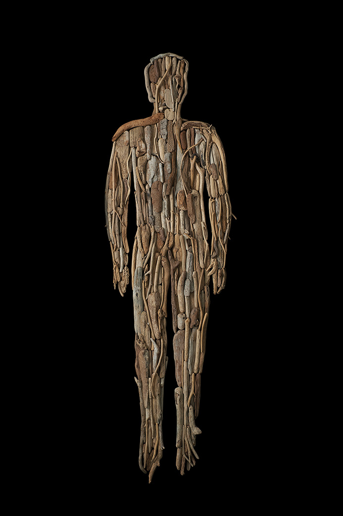 Anatomías 6<br/>Caja de madera y maderas de deriva. 2018. 63,5 x 193 x 6 cm