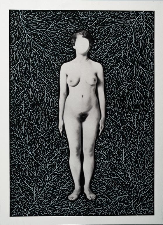 Cuerpos 2<br/>Caja de madera, fotografía impresa sobre papel Canson Edition blanco natural 250 gr. e intervenida con rotulador blanco. 27,5 x 38 cm. Ed.: Única / Unique