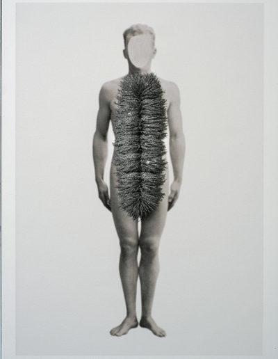 Cuerpos 18<br/>Caja de madera, fotografía impresa sobre papel Canson edition blanco natural 250gr. y limaduras de hierro. 27 ́5 x 38 cm