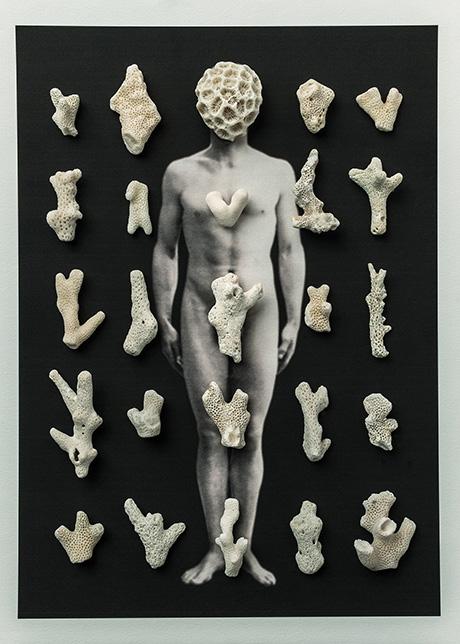 Cuerpos 19<br/>Caja de madera, fotografía impresa sobre papel Canson edition blanco natural. 250gr. y coral 27 ́5 x 38 cm