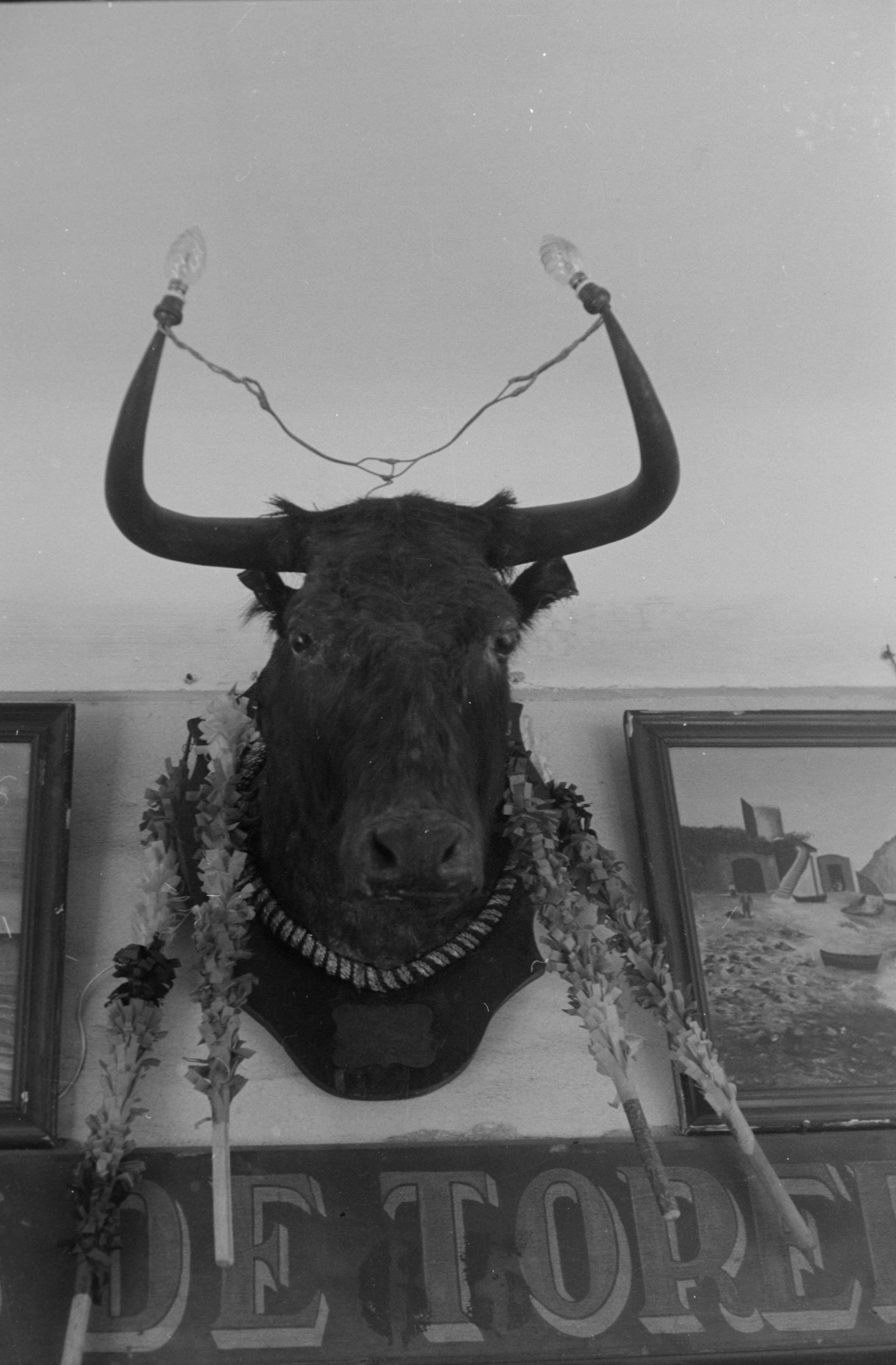Jerez de la frontera, 1959<br/>30 x 40 cm