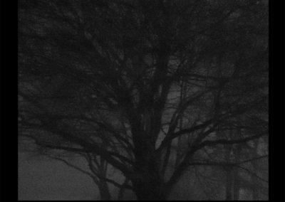 Her eyes adjusted to the night. She wasn't scared, 2017<br/>(Sus ojos se acostumbraron a la oscuridad de la noche. No estaba asustada) Impresión de tintas de pigmentos