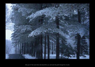 She got off the road when she heard the car, and took the path through the woods, 2015<br/> (Cuando escuchó que se acercaba un coche salió de la carretera y cogió el camino del bosque) Impresión de tintas de pigmentos
