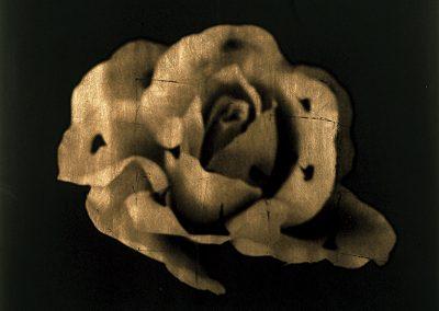 Murmuran los recuerdos, 2004<br/>Película ortocromática con láminas de oro / Orthocormatic film and gold leaf.