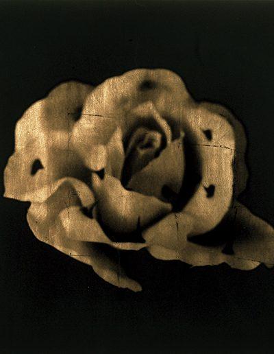 Luis González Palma. Murmuran los recuerdos, 2004<br/>Película ortocromática con láminas de oro / Orthocormatic film and gold leaf.
