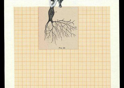 Hojas de un diario, 2007 (13)<br/>